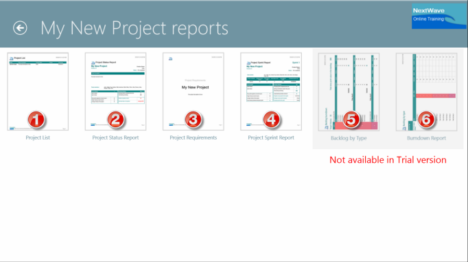 ScrumMaster Project Reports for Export
